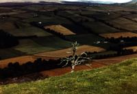 picture of fields from a hill fort in Scotland